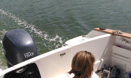 Investigadores de la UHU demuestran que el vertido de Mina La Zarza no llegó al mar
