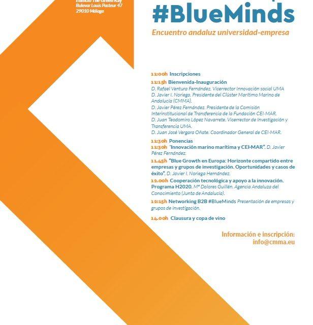 Cinco grupos investigación de la UHU participan en el Workshop #BlueMinds